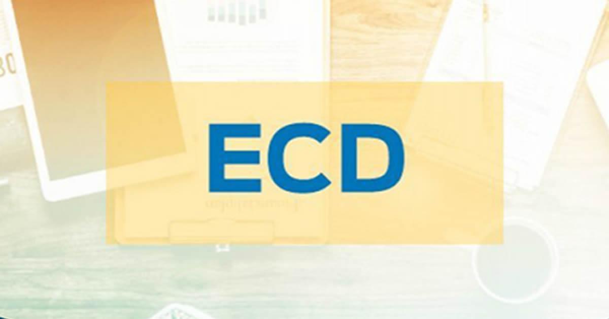 ECD: versão atualizada do programa está disponível próximo ao fim do prazo