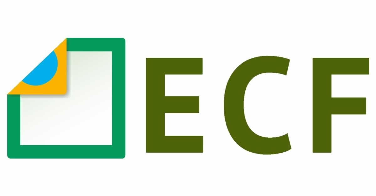 ECF: Receita divulga nova versão para download